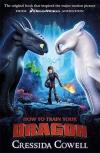 How To Train Your Dragon Film Tie In